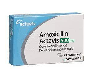 Amoxicillin (Amoxi)